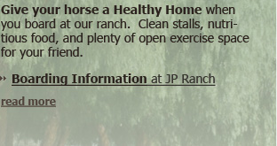 Give your horse a healthy home when you board him or her in our ranch stables. Clean stalls, nutritious food, and plenty of open space to exercise your friend.